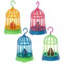 Pássaro em gaiola