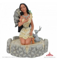 Pocahontas Brave Beauty - Disney