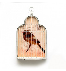 Gaiola parede c/ pássaro