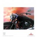 Quadro 3D Harley Davinson