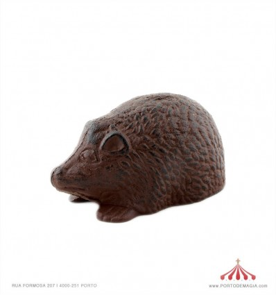 Ouriço em Ferro