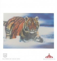 Quadro 3D Tigre