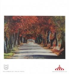 Quadro 3D árvores Outono