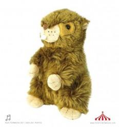 Marmot teddy